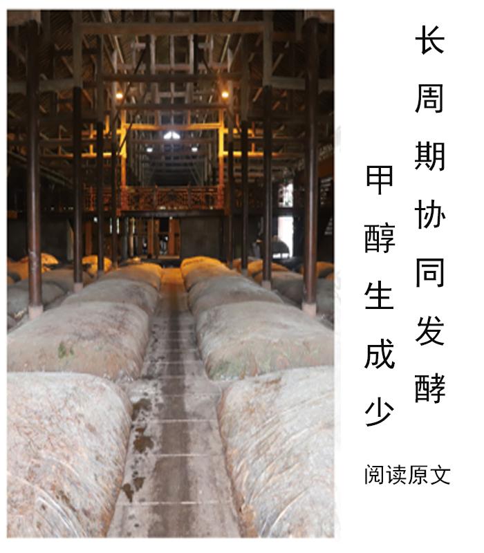 发酵周期-1.jpg